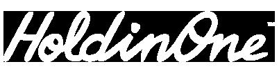 logo-holdinone